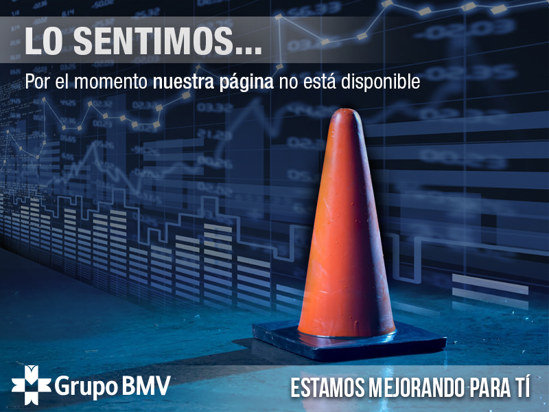 Sitio Grupo BMV no disponible